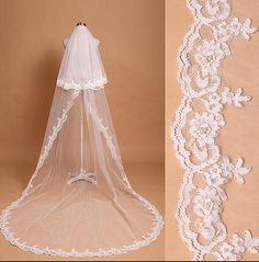 Hey, I found this really awesome Etsy listing at https://www.etsy.com/listing/225397930/cathedral-veil-luxury-wedding-veil