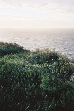 Normandy by Quentin de Briey.