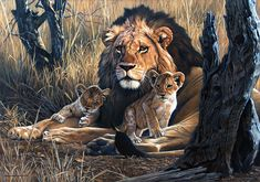 johan hoekstra art | Lion and Cubs – 2006 Johan Hoekstra Wildlife Art