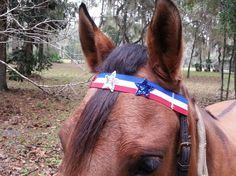 Stars and Stripes Browband for Patriotic Horse or by MyBuddyBling