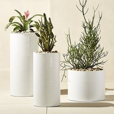Shop oscar large hi-gloss white planter.   Slicked in hi-gloss white, galvanized steel cylinder plants greens in industrial fashion.  Ridged, waterproof construction is sized for spaces large and small, indoors or out.