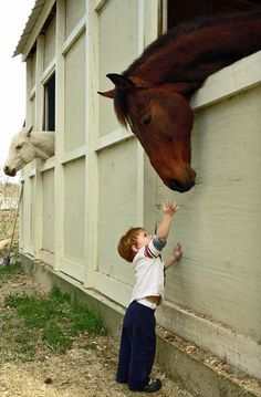 Mr. Ed is great with children.