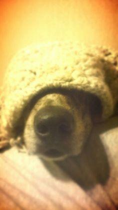 Hidden in a scarf ;)