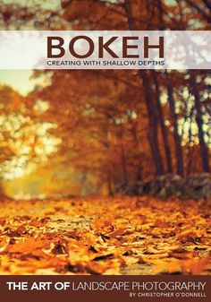 Bokeh: Creating with Shallow Depths is an eBook written to inspire photographers to think beyond the confines of a deep depth of field. It's is focused on guiding landscape photographers of all levels to widen their aperture and see the environment as light and shapes, and to create abstract, ethereal images that have a deeper meaning and interpretation.
