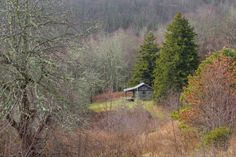 Ferguson cabin   Appalachian Highlands Science Learning Center at Purchase Knob   Great Smoky Mountains National Park