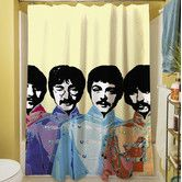 Found it at Wayfair - Sixties Legacy Polyester Shower Curtain