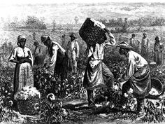 """""""Enslaved women who worked in the fields were required to return to the field shortly after giving birth, so they had to balance the duties of being a field worker with being a mother as well. Enslaved women would take very short breaks to nurse their children before returning to hours of grueling labor."""""""