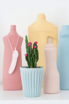 If you focus in on the cactus, you'll miss out on the fact that the bottles in the background are simply spray painted plastic shampoo, fabric softener and liquid dish washing soap plastic bottles. What a great idea!