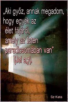 """""""Aki győz, annak megadom,  hogy egyék az  élet fájáról,  amely az Isten  paradicsomában van"""" Bible, Autumn, Attila, Biblia, Fall Season, Fall, The Bible"""