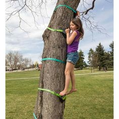 HearthSong Tree Climber   Wayfair Kids Climbing, Climbing Holds, Backyard Play, Outdoor Play, Play Shop, Tree Trunks, Gross Motor Skills, Get Outside, Climbers