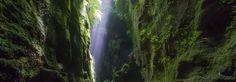 Blue Mountains Australia Tourism Website