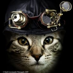 I love cats. I love steampunk. I love cats and steampunk. Gato Steampunk, Costume Steampunk, Steampunk Animals, Mode Steampunk, Style Steampunk, Steampunk Fashion, Steampunk Goggles, Steampunk Necklace, Gothic Steampunk