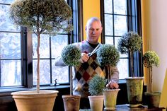 In early autumn, making your own topiary trees from cuttings taken from the garden is one of the most rewarding projects for a gardener. Shortly before frost arrives, cuttings from lavender, rosemary,. Herb Garden, Garden Art, Garden Plants, Garden Ideas, Garden Tips, Topiary Plants, Topiary Trees, Topiary Garden, Edible Plants