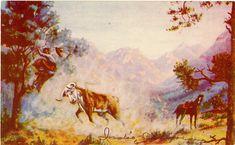 Rough Ranges  Western L. H. Dude Larsen Vintage Postcard 1939