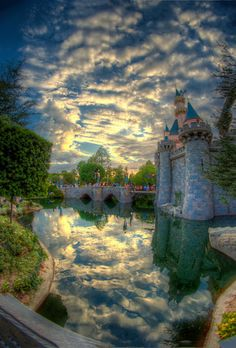 Disneyland - William McIntosh Photography