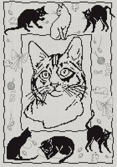 Gallery.ru / Фото #48 - черные кошки - irisha-ira