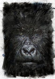 Gorilla by Bill Sienkiewicz *