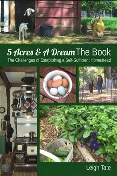 5 Acres & A Dream: 5 Acres & A Dream The Book: The Challenges of Establishing a Self-Sufficient Homestead