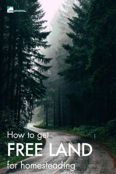 You never thought cheap land or free land in the US are options? Get to know about 17 most lucrative lands you can get for homesteading completely for free. Homestead Land, Off Grid Homestead, Homestead Survival, Cheap Land, Survival Shelter, Beautiful Sites, Real Estate Tips, How To Buy Land, Outdoor Recreation