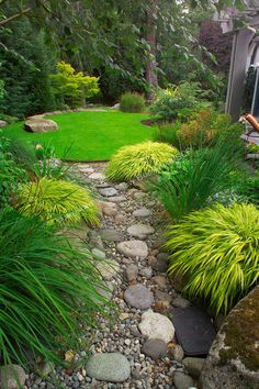 This long but shallow backyard in a suburb east of Seattle incorporates a dining patio, a small but meticulous lawn, a dry streambed, and plantings for year-round interest in a small backyard space just 35 feet deep x 135 feet long, roughly one tenth of an acre.