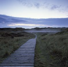 Wooden path leading across the dunes to crow point, North Devon