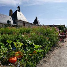 Jardin potager #Cheverny. #Loirekiekjes