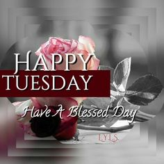 Happy Tuesday. Have a Blessed Day!!