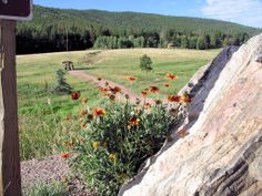 Conifer Colorado | Myers Ranch Open Space Park in Conifer Colorado