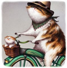 42 Best Cats on bikes images  9ddd6a98e