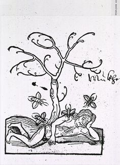 Detail from Hortus Sanitatis, 1491