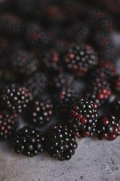 Blackberries   Honeytanie - Tanya Balyanitsa