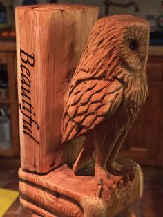 Chainsaw carved owl on books. This is only Just one part of this beautiful bench.
