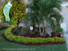 Riverview Flower Farm's Florida Friendly Plants ™