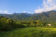 Walk in the stunning mountains of Japan Yakushima, Trekking Holidays, Adventure Holiday, Visit Japan, All Holidays, Trail, Places To Visit, Summer Vacations, Tours