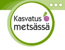 Metsän oppimispolku Nature Crafts, Special Education, Preschool, Environment, Science, Teaching, Math, Preschools, Flag