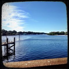70 and beautiful. Winter in Florida. #luvinlife