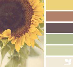 Design Seeds + Color Atlas by Archroma® Design Seeds, Nature Color Palette, Colour Pallette, Color Combos, Coordination Des Couleurs, Brown Color Schemes, Bathroom Color Schemes Brown, Kitchen Color Schemes, Brown Colors