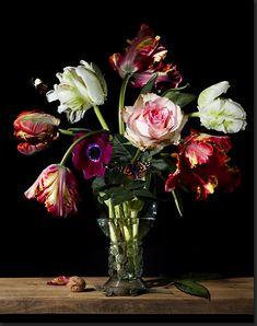 Bas Meeuws - contemporary Dutch flower still life photography