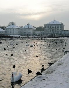 """Take a stroll near """"Castle Nymphenburg"""". This was modelled after Versailles."""