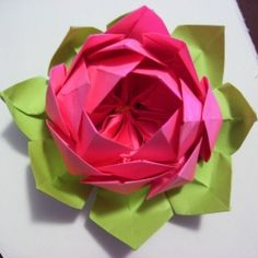 The lotus flower is a symbol of overcoming struggle.  Learn how to fold your own