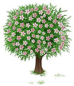 Весна дерево Прозрачный PNG изображения Clipart