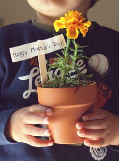 Daughter Quotes Daughters Day Quotes Share these Lovely Quotes for daughters and mothers on daughters Day Have agreat Daughters day Love you All My Daughters Daughters Day Quotes, Mothers Day Quotes, Mothers Love, Happy Mothers Day, Miss You Mom, I Love You Mom, Mom And Dad, Just For You, Four Seasons