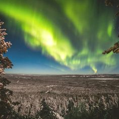 Experience the magic of Lapland and photograph the amazing Northern Lights! Going Aurora hunting with our professional guides, you have the best possible chance to witness the Northern Lights. Photography Tours, Aurora, Northern Lights, Hunting, Explore, Amazing, Travel, Viajes, Destinations