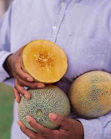 To enjoy a succulent, flavorful melon, youll have to grow your own. Fortunately, melons are easy to grow if you have the space, especially if you choose a variety that does well in your climate.