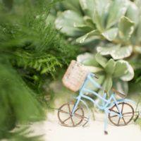 ya-ya-farm-and-orchard-wedding-reception-bike-on-table