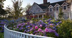 The White Elephant ~ Hotel Residences ~  Nantucket MA