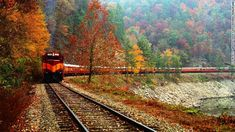 The Great Smoky Mountains Railroad in North Carolina.