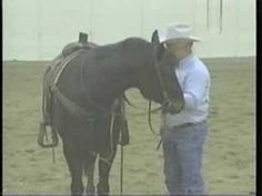 Teaching a horse to respond to LEG PRESSURE