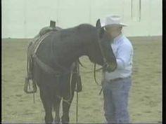 Teaching a horse to respond to LEG PRESSURE