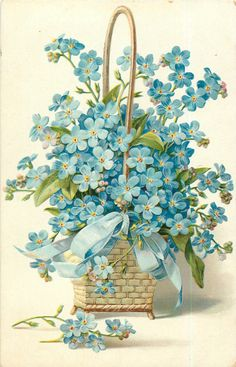forget-me-nots, in square wicker basket, blue ribbon